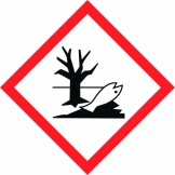 GHS Environment Pictogram