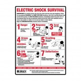 Electric Shock Survival Signs